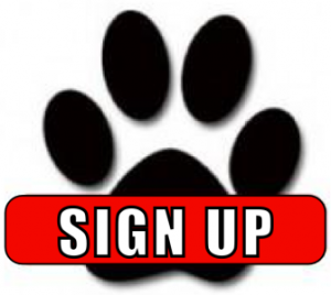Sign Up Button2